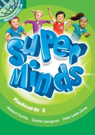 Super Minds 2 Flashcards